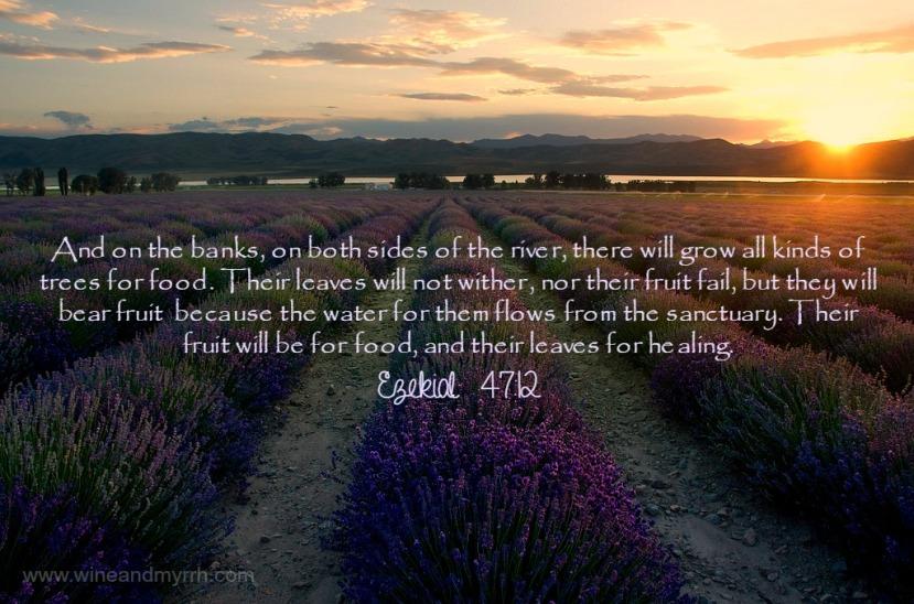 Ezekial 47-12